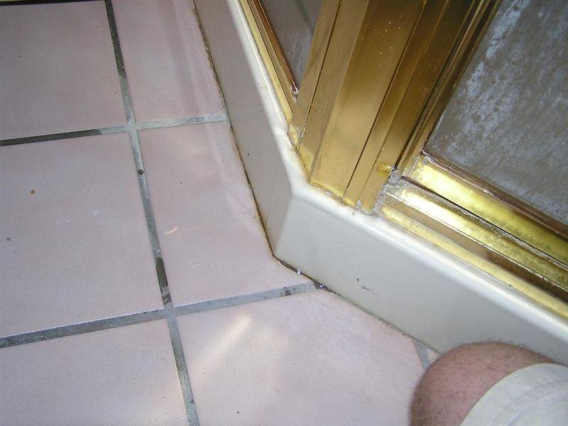 Leaking Shower Door