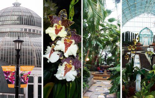 Como-conservatory4