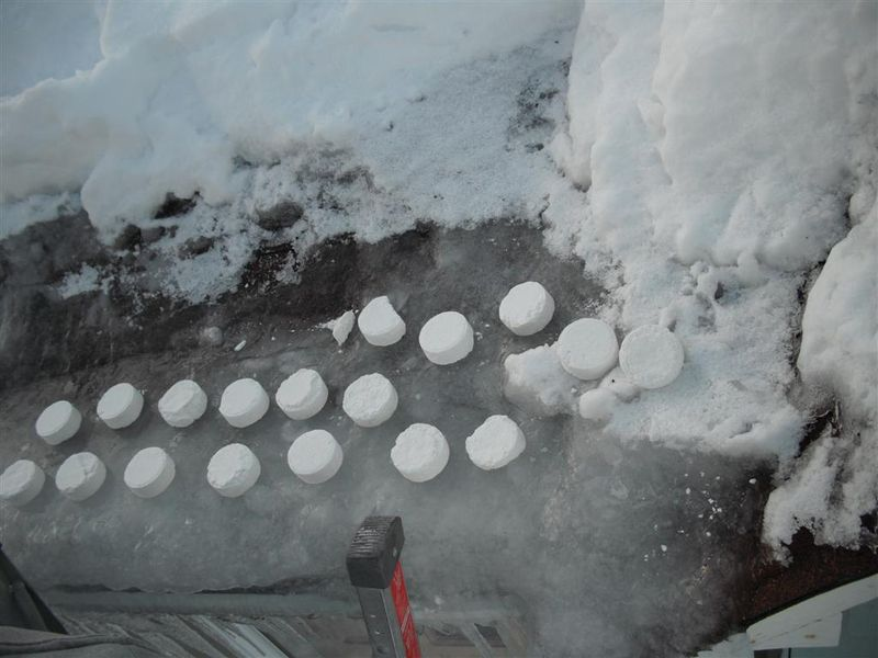 Roof Melt Tablets Placed Day 1