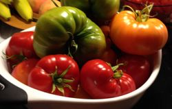 Tomatoes2013sep