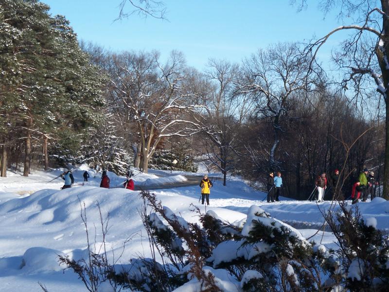 Wirth-skiing1