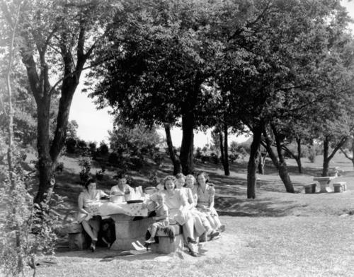 Hwy100-picnic