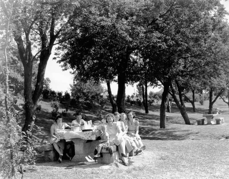 Hwy100-picnic2