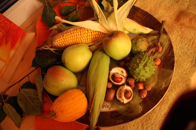 Thanksgiving-229287_640